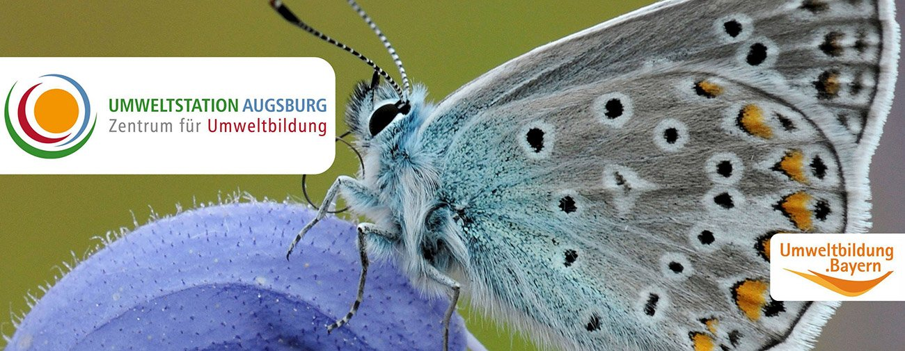 Zahlreiche Aktivitäten bietet die Umweltstation Augsburg an